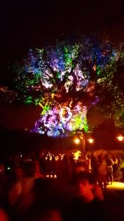 Tree of Life, Orlando