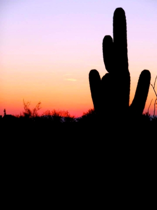 Phoenix Scenery